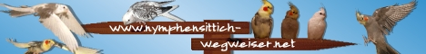 Nymphensittich Wegweiser