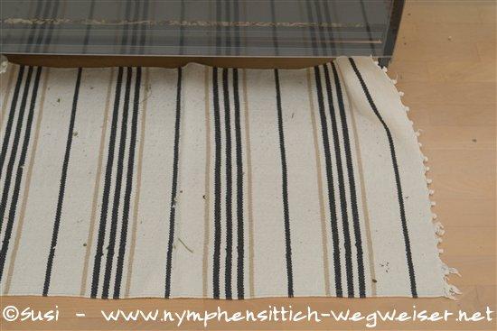 Fußboden Aus Leder ~ Fußboden für das vogelzimmer für nymphensittiche