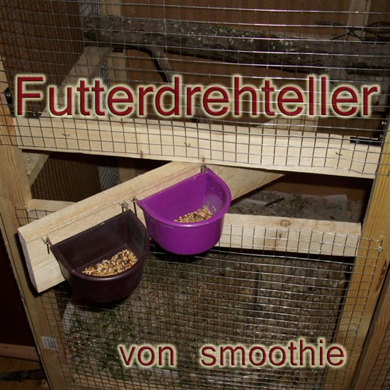 Futterdreteller - smoothie